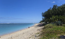 La Saline beach, La Reunion island, france. A view in LA SALINE, LA REUNION, FRANCE, MAY 02 :  La Saline beach, La Reunion island, Indian Ocean, may 02, 2016, in Stock Images