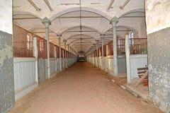 La salle de l'écurie dans le bâtiment du centre de cheval-élevage Photo stock
