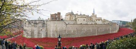 La sangre barrió tierras y los mares del rojo Fotos de archivo libres de regalías