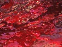 La sangre cubrió 6 Imagen de archivo libre de regalías