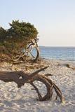 La Sardaigne Photographie stock libre de droits