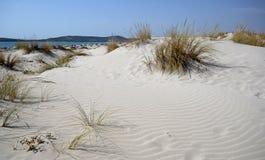 La Sardegna, Italia, paesaggio dei banchi di sabbia lungo la costa fotografia stock libera da diritti