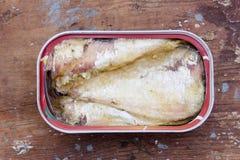 La sardina può Fotografie Stock