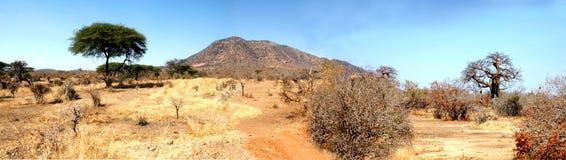 La savana della Tanzania in Africa Fotografia Stock