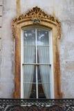 La savane de la fenêtre 1 Images stock