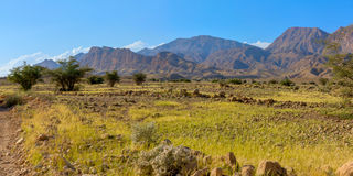 La savane en Iran Photos stock