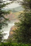 La sbirciata a fischia la finestra attraverso gli alberi attillati per rivelare la linea costiera dell'Oregon fotografia stock libera da diritti