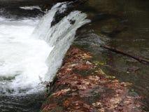La scène de chute dans Whatcom tombe parc Image stock