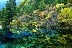 La scène de l'automne Photos libres de droits