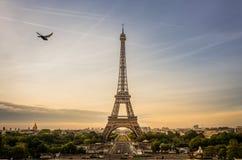 La scène de lever de soleil de Tour Eiffel avec un pigeon vole à coté, Paris photographie stock libre de droits