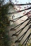 La scène de la roue hydraulique dans le Chinois image libre de droits