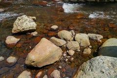 La scène du courant clair d'eau douce traversent le hard rock naturel de rivière avec le lichen, la petite vague et le fond de ré photo libre de droits