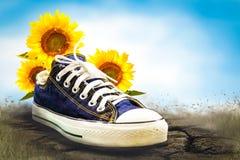 La scarpa blu con il sole fiorisce la scena Immagine Stock