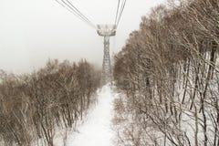 La scena di inverno Immagine Stock