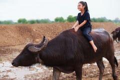La scena tradizionale rurale della Tailandia, ragazza tailandese del pastore dell'agricoltore è r Fotografia Stock