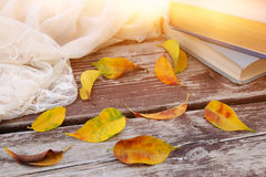 la sciarpa, i libri e dorati delicati asciugano le foglie sulla vecchia tavola di legno all'aperto nel parco Fotografie Stock
