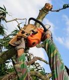 La scie coupant le bois Photographie stock