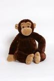La scimmia vede, scimmia fa Fotografie Stock Libere da Diritti