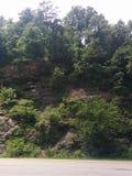 La scogliera del nord di Carolina Hillside oscilla il fogliame scenico fotografia stock