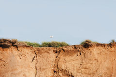 La scogliera rossa Fotografia Stock