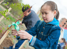 La scolara pianta l'albero Immagini Stock
