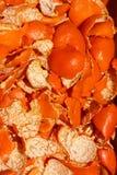 La scorza arancio, prende il sole al sole Fotografia Stock Libera da Diritti