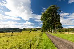 La Scozia rurale Fotografia Stock