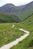 La Scozia, valletta Nevis, facente un'escursione Immagini Stock Libere da Diritti