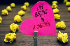La scrittura concettuale della mano che mostra la vita comincia in un giardino L'agricoltura del testo della foto di affari piant fotografia stock