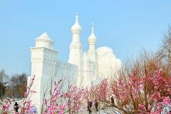 La scultura di neve - castello e fiori Immagine Stock