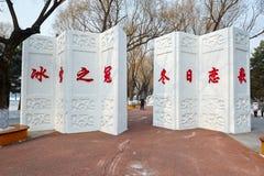La scultura di neve - schermo Immagini Stock
