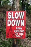 La señal de peligro que pide cuidado se debe tomar debido a los zarapitos del bebé en el camino Foto de archivo libre de regalías