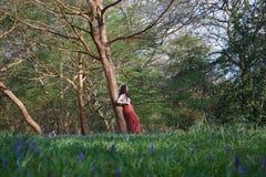 La señora de moda se inclina contra un árbol en un arbolado inglés en primavera temprana, con campanillas en el primero plano imagen de archivo libre de regalías