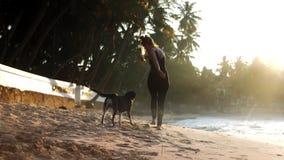 La señora delgada camina con el perro juguetón en la playa arenosa del océano metrajes