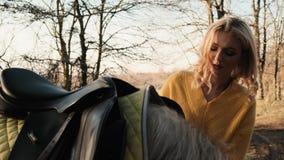 La señora joven seria y pensativa pone la silla de montar en su caballo antes de la equitación en la cámara lenta de madera almacen de metraje de vídeo