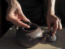 La señora se cae dormido el té en una tetera de la arcilla Tetera de la arcilla Ceremonia de té Té en manos femeninas imagen de archivo