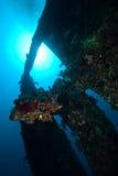 La sección severa del naufragio Fotos de archivo