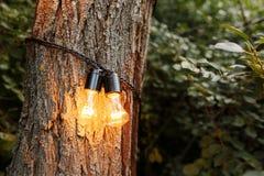 La secuencia al aire libre decorativa enciende la ejecución en árbol en el jardín en la noche imágenes de archivo libres de regalías