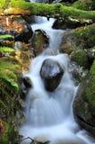 La secuencia cae abajo The Creek Imagen de archivo