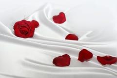 La seda blanda con rojo se levantó Foto de archivo libre de regalías