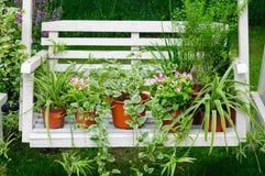 La sedia di oscillazione è piante in vaso messe fotografie stock