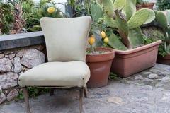 La sedia nel terrazzo fra le piante fotografia stock