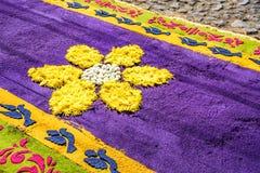 Tappeto Floreale Bruxelles : Lo spettacolare tappeto di fiori coprirà la grand place di