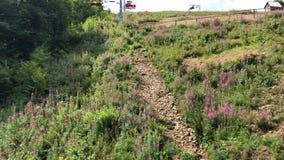 La seggiovia si muove sopra il pendio di montagna di fioritura stock footage
