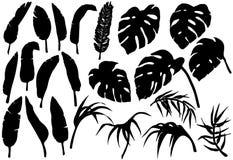 La selva tropical sale de siluetas fijadas Fotos de archivo