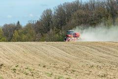 La semina del cereale Fotografia Stock