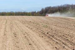 La semina del cereale Fotografia Stock Libera da Diritti