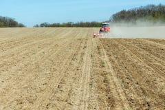 La semina del cereale Immagini Stock