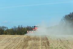 La semina del cereale Immagine Stock Libera da Diritti