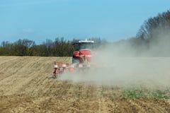 La semina del cereale Immagini Stock Libere da Diritti